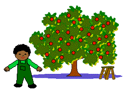 Boy in front of apple tree